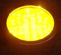 QL-36Y LED amber pond light